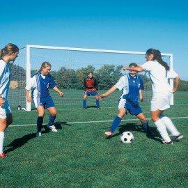 Bison International Soccer Goal - 8'h x 24'w x 4'd x 10'b (4'' round)