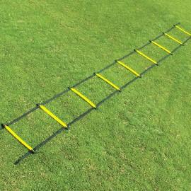 Fisher 12' Economy Single Speed Ladder