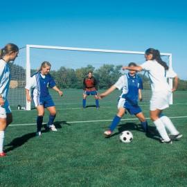 Bison International Soccer Goal - 8'H x 24'W x 4'T x 10'B (4'' Round)