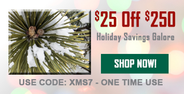 $25 Off Your Purchase Of $250 Or More!